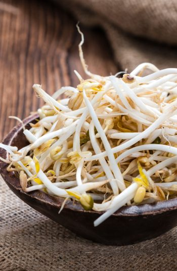 Regrow food from scraps! It's almost too good to be true, right? Well, it is the truth and I have 22 foods to share with you that can regrow. It's so easy to regrow bean sprouts!