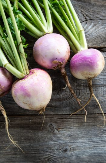 Regrow food from scraps! It's almost too good to be true, right? Well, it is the truth and I have 22 foods to share with you that can regrow. Root plants like turnips are easy to regrow!