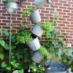Gardening, home garden, garden hacks, garden ti