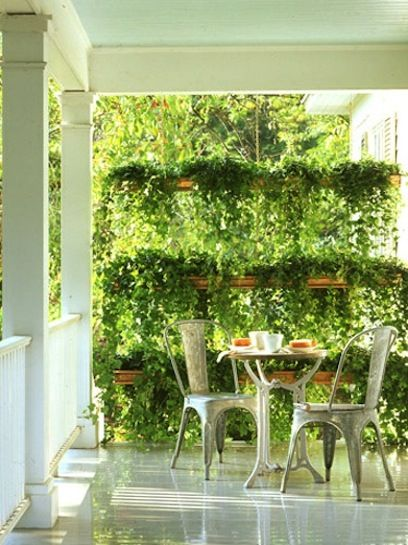 10 Ways to Creative Privacy Without a Fence