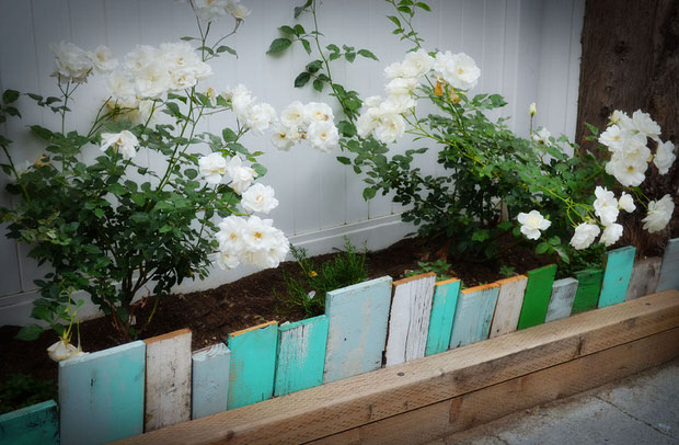 12 Creative Garden Edging Projects that Will Transfor Your Yard