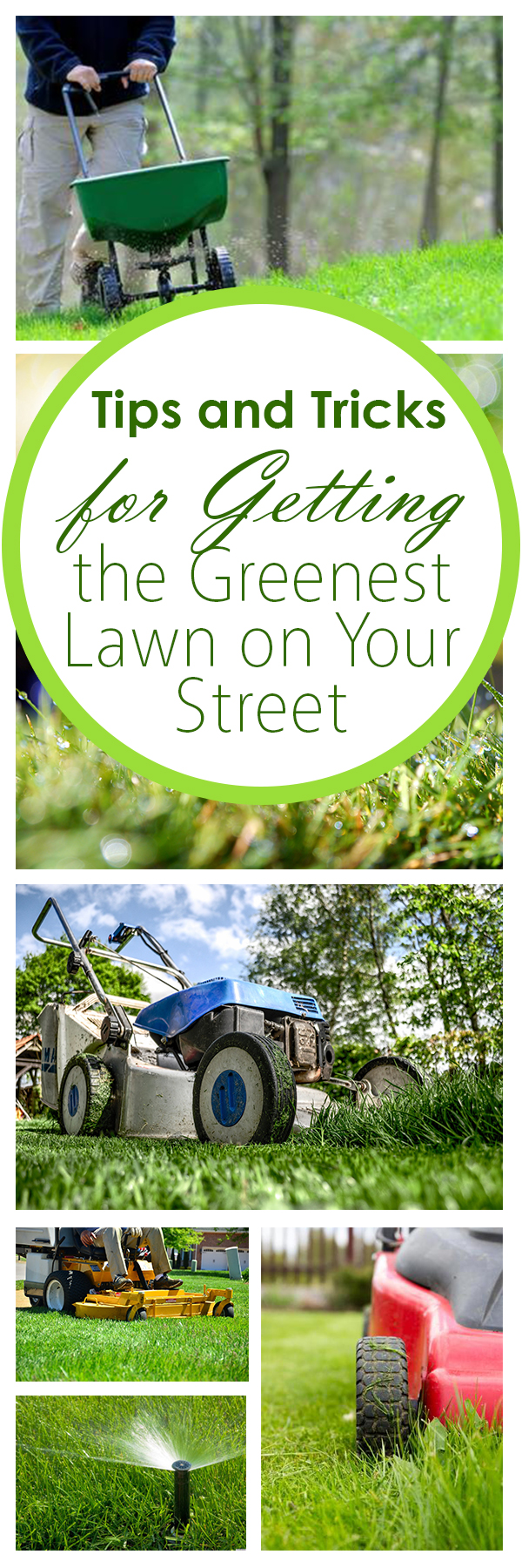 Tips on landscaping your yard : Tips and tricks for getting the greenest lawn on your street page