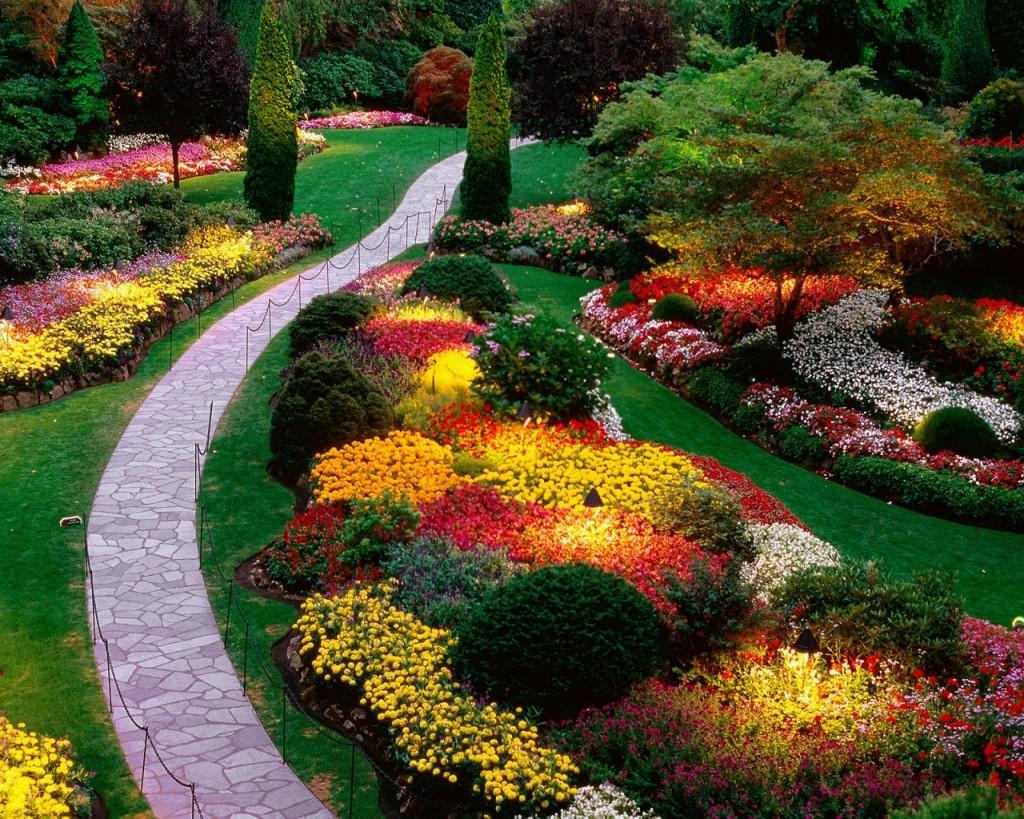 18 Mind-Blowing Backyard Landscape Ideas