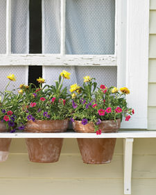 Window boxes, window box projects, easy projects, DIY projects, DIY window box projects, popular pin, landscaping, yard hacks, yard tips and tricks.