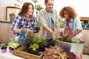 Gardening, home garden, garden hacks, garden tips and tricks, growing plants, plants, vegetable gardening, planting fruit, flower garden, outdoor living, Best Gardening Tips And Tricks For Beginners