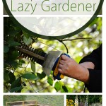 Lazy gardening, lazy gardener tips, popular pin, yard and landscape, yard and landscape ideas, DIY projects, easy DIY, DIY garden, gardening, gardening tips.