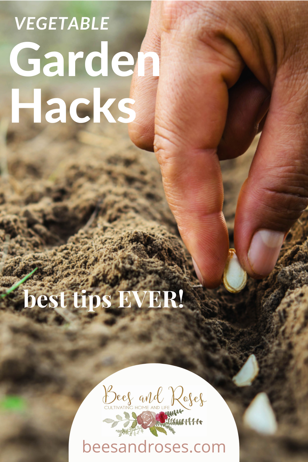 Vegetable garden might seem intimidating, but with these vegetable garden hacks, it's easy to have a high yield every year! Check them out today for the healthiest plants all year long. #gardeninghacks #vegetable #beesandrosesblog