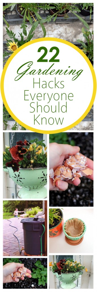 22 Gardening Hacks Everyone Should Know