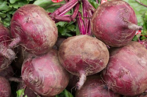 Vegetable gardening, growing veggies, container gardening, popular pin, growing veggies in containers, gardening hacks, easy gardening.