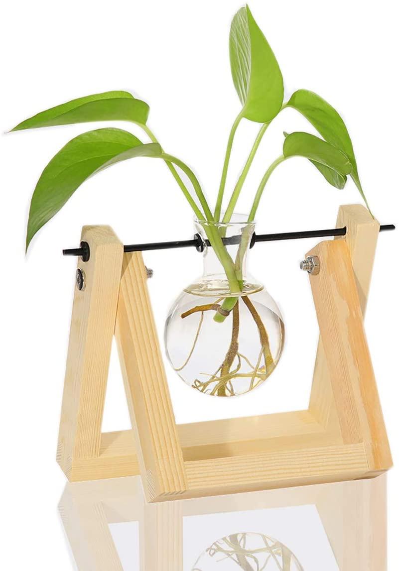 Desktop Planter-how to build an indoor herb garden