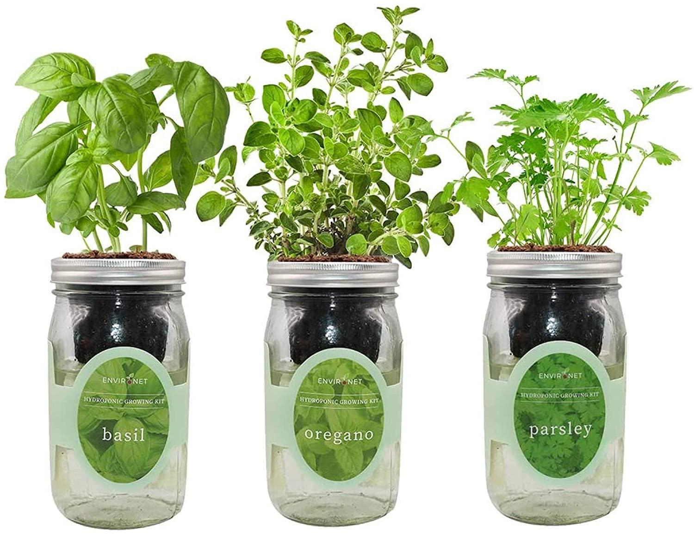 howto build an indoor herb garden using mason jars