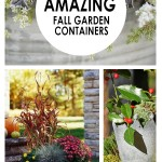 10-amazing-fall-garden-containers