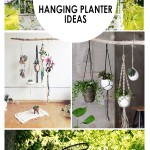 Hanging planter, planter ideas, hanging garden planter, gardening, DIY gardening, popular pin, gardening hacks, gardening tips, garden tips.