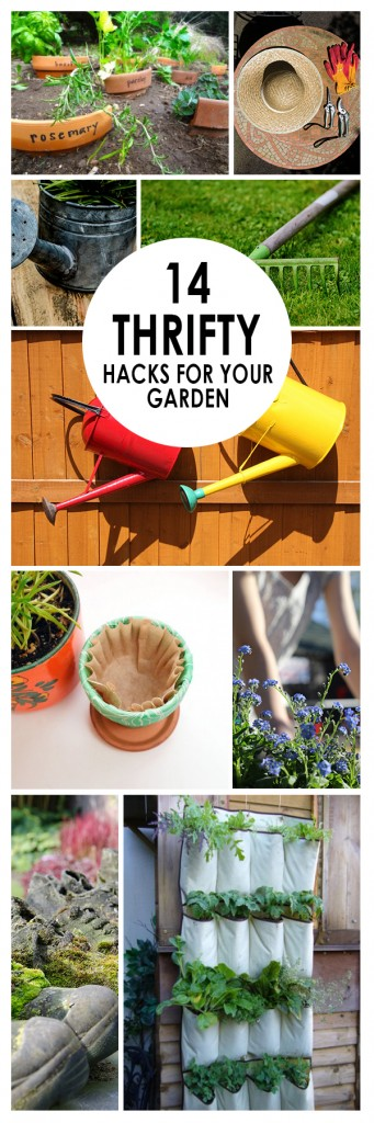 14 Thrifty Gardening Hacks ~ Bees and Roses