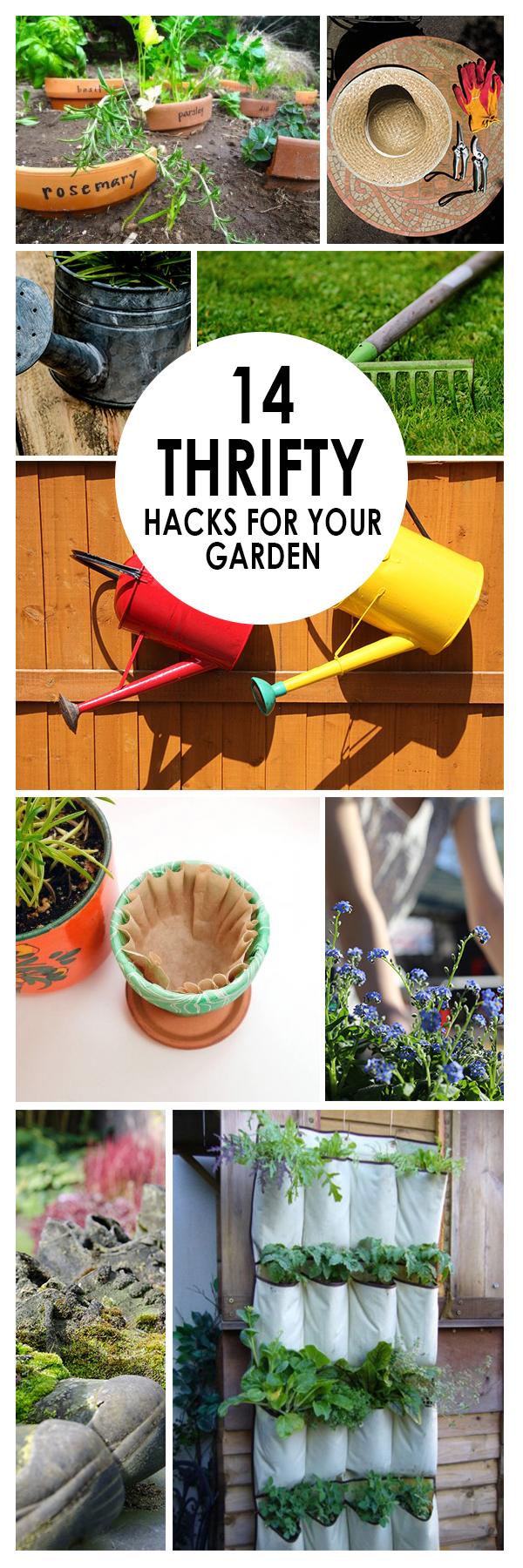 Gardening Hacks, Gardening Tips, Gardening, Gardening Tips, Gardening Ideas, Gardening for Beginners