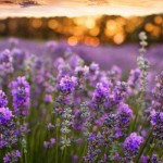 10-ways-to-repel-mosquitos-in-your-garden-naturally4