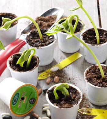 10-diy-seed-starter-pots10