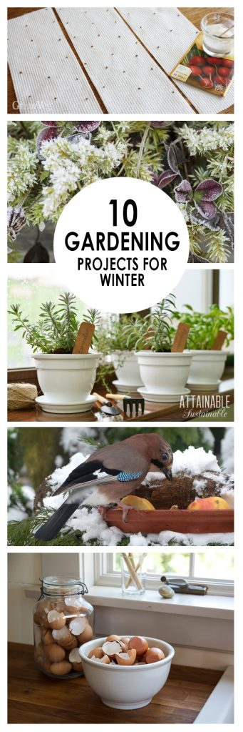 DIY Gardening Projects, Gardening Projects, Gardening Ideas, Garden Ideas, DIY Garden Ideas, Gardening Projects for beginners, Gardening for Beginners