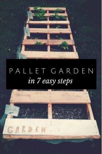 pallet-garden-projects-7-step-pallet-garden