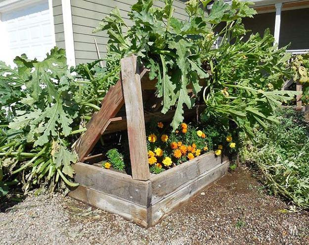 pallet-garden-projects-squash-growing-rack