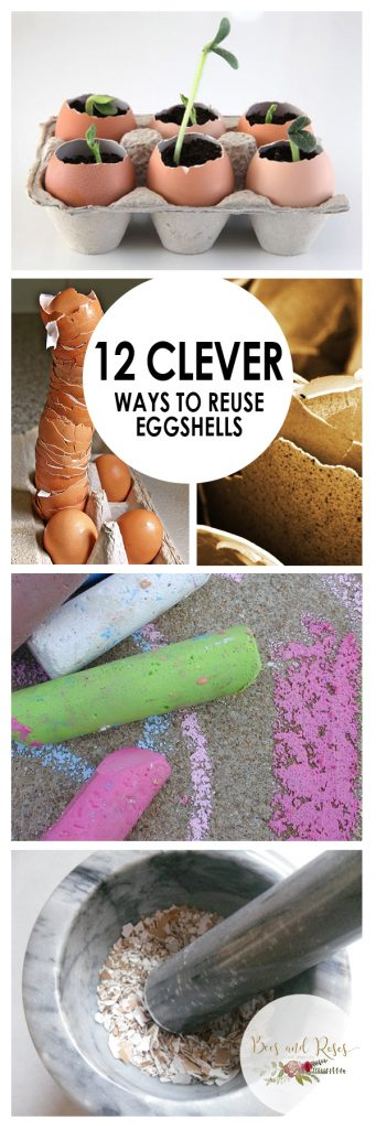 How to Reuse Eggshells, Uses for Eggshells, Eggshells, Eggshells in the Garden, Gardening Hacks, Gardening Tips and Tricks, Gardening 101, Gardening Tips, Reusing Eggshells, Popular Pin