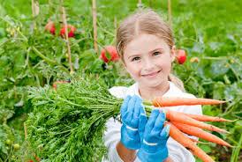 Kid Gardening, Kid Gardening Projects, Gardening Projects for Kids, Kid Projects, Gardening 101, Gardening Projects, Easy Gardening Projects, Simple Gardening Projects, DIY Gardening Projects, Gardening With Kids, Popular Pin