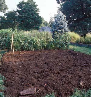 Garden Soil, How to Improve Soil Quality, Easy Ways to Improve Soil Quality, How to Improve Soil, Improving Garden Soil, Garden Soil, How to Improve Garden Soil, Gardening, Gardening 101, Vegetable Garden.