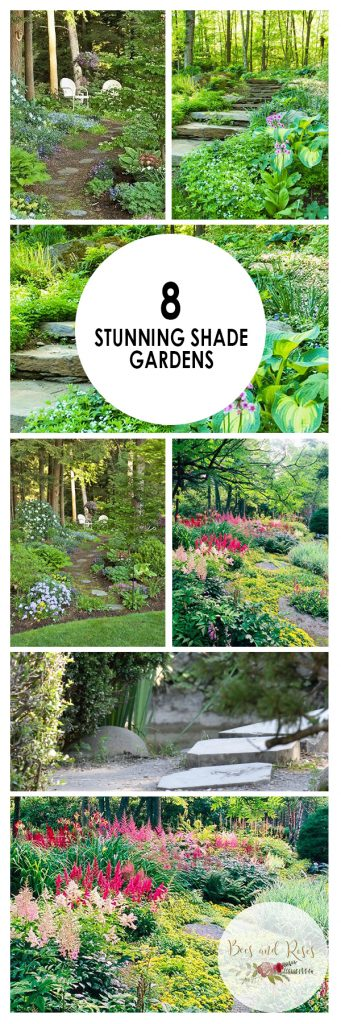 Shade Gardens, How to Grow a Shade Garden, Shade Garden Ideas, Landscaping Ideas, Backyard Landscaping, Backyard Landscaping Ideas, Backyard Gardening TIps and Tricks, Popular
