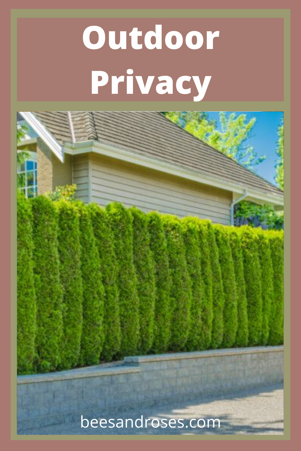 There is nothing better than going outside and enjoying the peace and beauty of the outdoors! And while you may love your neighbors, you don't necessarily want to SEE them while you're relaxing on the patio. What you need are some beautiful outdoor privacy plant ideas to give your border both privacy and beauty! #planttheseforprivacy #plantthisforprivacy