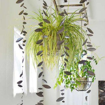 Bathroom Plants, Indoor Gardening, Indoor Garden, Gardening, Garden Ideas, Gardening Tips, Gardening Tricks