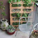 Urban Gardening, Gardening 101, Gardening Tips and Tricks, Indoor Gardening, Urban Gardening, Gardening TIps and Tricks, Urban Gardening Hacks