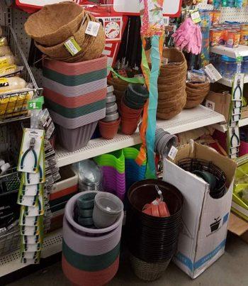 Dollar Store Gardening, Dollar Store Gardening Hacks, Dollar Store Gardening Ideas, Gardening, Gardening Ideas, Garden Ideas, Cheap Garden Ideas,