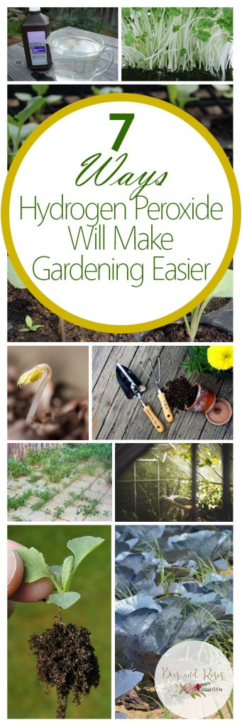 Hydrogen Peroxide Garden, Hydrogen Peroxide Gardening, Gardening, Garden Ideas, Gardening Tips, Gardening Tricks