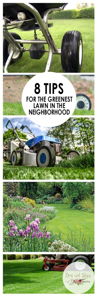 8 Tips for The Greenest Lawn in The Neighborhood. Green Lawn Tips, How to Get A Green Lawn, Lawn Care Tips and Tricks, Lawn Care Hacks, Yard Care, Yard Care Tips and Tricks, Landscaping, Landscaping 101