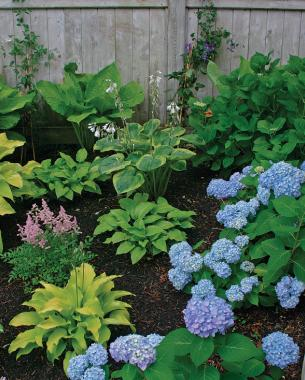 Easy Tips for A Great Garden Design5 - Copy