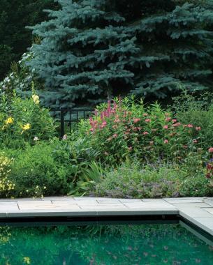 Easy Tips for A Great Garden Design6 - Copy - Copy