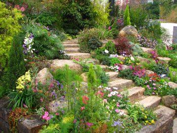 Easy Tips for A Great Garden Design8