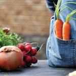 Organic Gardening, Organic Gardening for Beginners, Organic Gardening Tips, Organic Gardening Pest Control, Garden Ideas, Gardening Ideas, Gardening