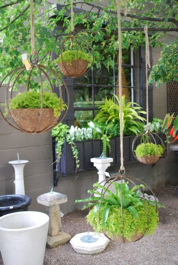 Hang Tight {10 Hanging Gardens}, Hanging garden, Hanging Gardens, Container Gardening, Hanging Garden Ideas, How to Grow A Hanging Harden, Container Gardening Tips and Tricks, Shrubs Perfect for Container Gardening, Gardening, Gardening Hacks, Gardening Tips and Tricks, Landscaping, Landscaping Tips and Tricks