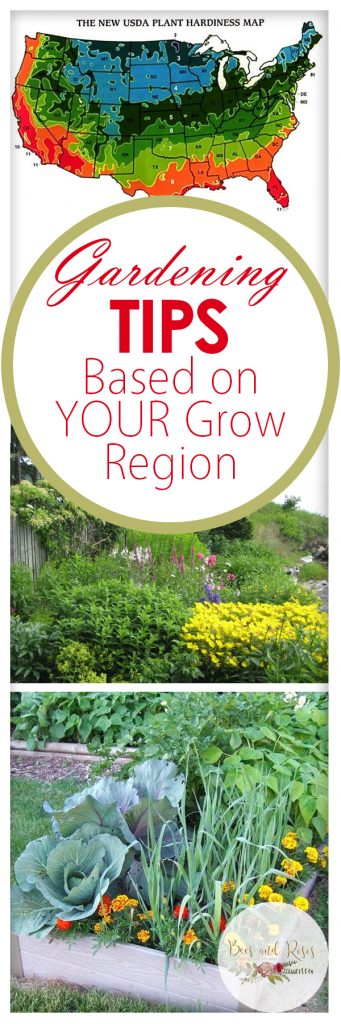 Gardening Tips Based on YOUR Grow Region| Gardening Tips, Gardening Tricks, Gardening Tips Based on Grow Region, Gardening Grow Region, Gardening Hacks, Vegetable Gardening, Vegetable Growing Tips, Popular Pin