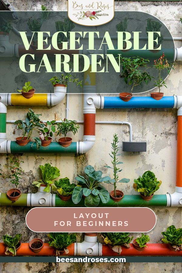 Have you ever wondered why some people have gardens with lots of vegetables while others struggle to grow much? Part of the reason for this can be the layout. There is a science to this and Bees And Roses can help. We want you to have the highest yield possible and will show you how to do this. All you have to do is read the post. Summer is right around the corner so don't wait too long. #howtoplantagarden #gardenideas #vegetablegardens