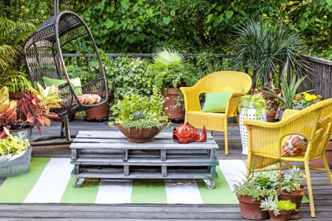 8 Ways to Make the Most of Your TINY Garden| Garden, Small Garden, Small Space Garden, Gardening, Gardening Hacks, Gardening Tips and Tricks, How to Landscape Your Small Yard, Small Garden Design Tips and Tricks, Popular Pin