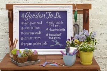 Quick and Easy Ways to Organize Your Potting Bench  How to Organize Your Potting Bench, Organize Your Potting Bench, Potting Bench Organization, Home Organization, Home Organization Tips and Tricks, Potting Bench, DIY Potting Bench, Potting Bench Projects, Popular Pin