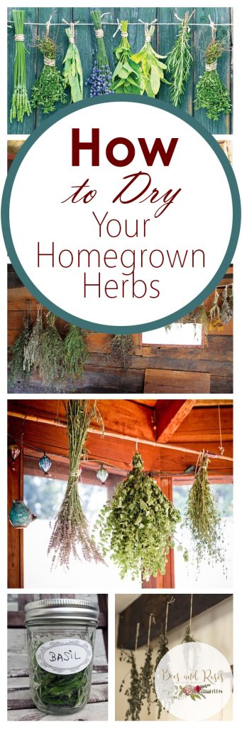 How to Dry Your Homegrown Herbs| Homegrown Herbs, Herb Gardening, Herb Garden, Garden Ideas, GArdening Ideas, Gardening,, Gardening for Beginners