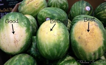 How to Pick the BEST Watermelon2