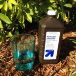 Hydrogen Peroxide, Hydrogen Peroxide In the Garden, Hydrogen Peroxide Uses, Hydrogen Peroxide Uses Garden, Garden Ideas, Gardening TIps, Gardening, Garden, Gardens, Gardening for Beginners
