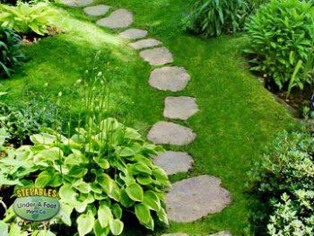 Pathway Plant, Pathway Plant Ideas, Pathway Plants Entrance, Pathway Plants Walkways, Gardening, Garden Ideas, Gardening Ideas
