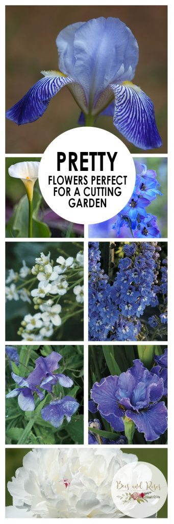 Pretty Flowers Perfect for A Cutting Garden| Cutting Garden, Cutting Garden Flowers, Flowers, How to Grow Flowers, Growing Flowers for a Cutting Garden, Popular Pin
