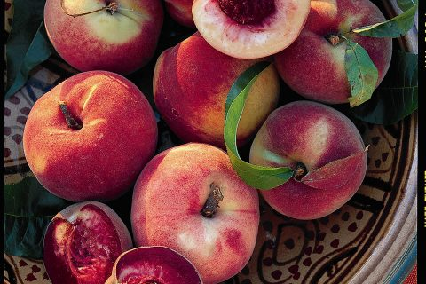 How to Grow Peaches, Growing Peaches, Gardening, Gardening 101, How to Grow Fruit, Growing Fruit Trees, Gardening Tips and Tricks, Popular Pin