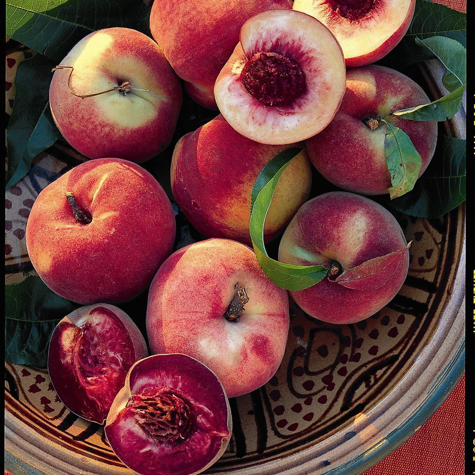 Growing Peaches, Peaches, Growing PEach Trees, Peach Trees, Growing Peaches In Pots, Container Gardening, Container Garden, Gardening, Fruit Gardening, Garden Ideas, Gardening Ideas